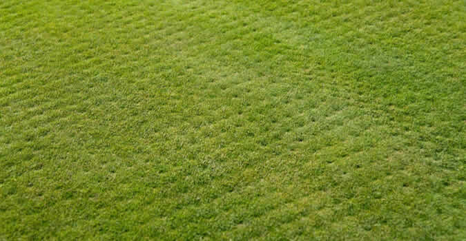 If You Want To Free Yourself From The Hours Of Aggravating Work That Go  Into Your Homeu0027s Lawn Care In Mountain View Lawn Aeration Services From  Chop Chop ...