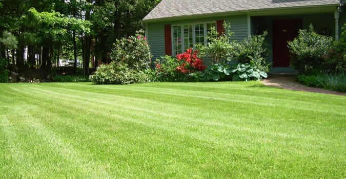 Superior Garden Plans